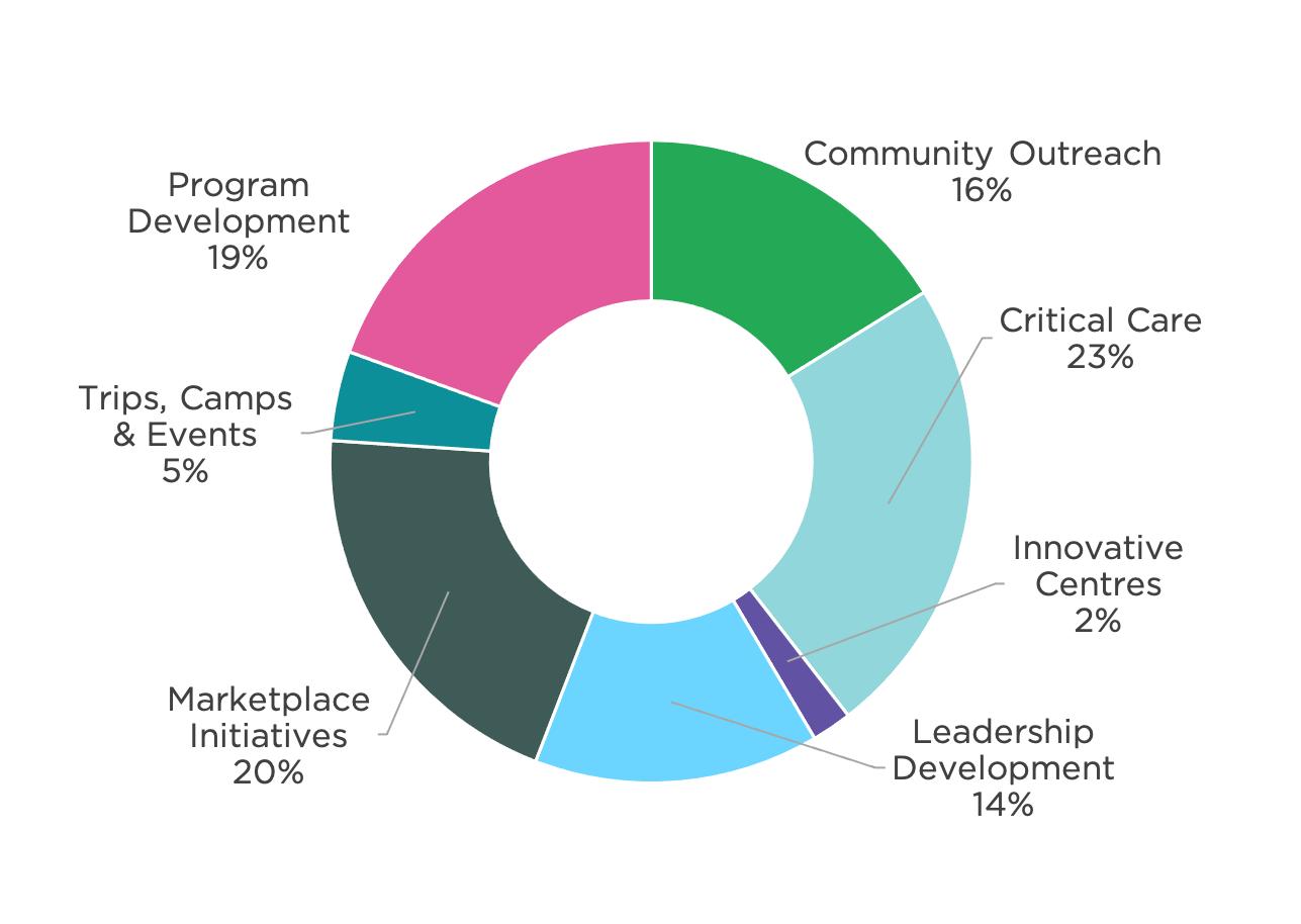 Pie chart of program expenses split into seven categories