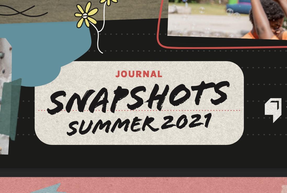 Summer Snapshots Publication 2021